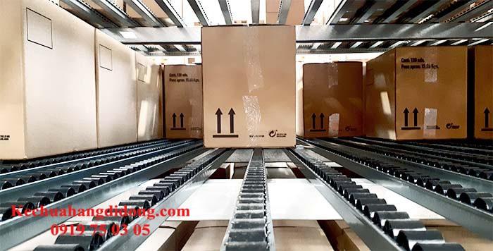 Hệ thống kệ đỡ thùng carton (Carton Flow Rack Systems)